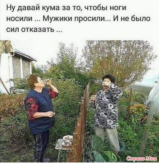 Дача - огород - 12